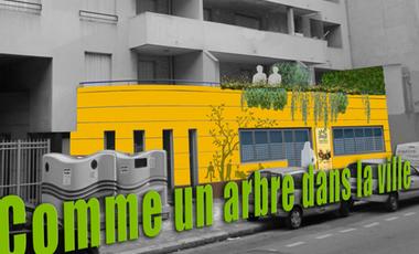 Project visual Comme un arbre dans la ville