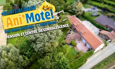 Visueel van project Ani'Motel : une pension et un centre de convalescence pour chiens et chats