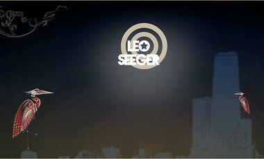 Visueel van project Nouvel album de Leo Seeger