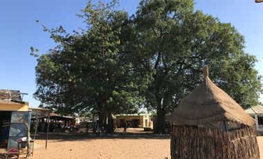 Visuel du projet TEN BI agit au Sénégal pour l'éducation et la santé