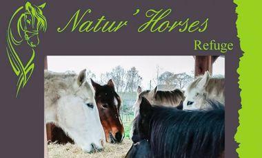 Project visual Natur'Horses - un toit pour toujours