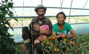 Visuel du projet Aidons les familles Mongoles isolées