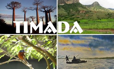 Project visual TiMADA : une expédition scientifique étudiante au cœur de Madagascar