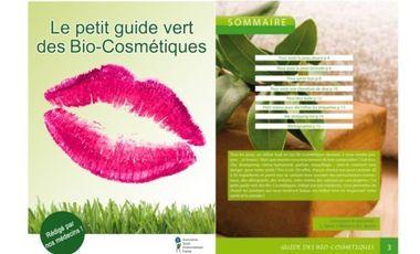 Visueel van project Le p'tit guide vert des bio-cosmétiques!