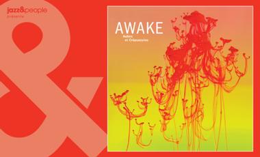 """Visueel van project AWAKE """"Aubes et Crépuscules"""""""