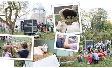 Visueel van project La collecte continue pour transformer le triporteur piaggio en ferme ambulante