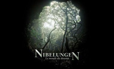 Visuel du projet Nibelungen, le monde du dessous