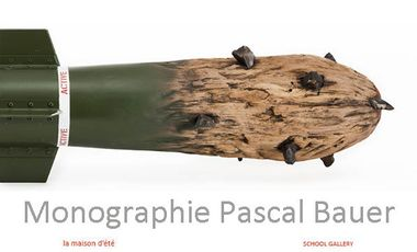 Project visual Monographie Pascal Bauer
