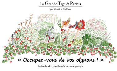 Visueel van project Livre Occupez-vous de vos oignons !, par Caroline Guilhou