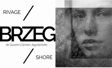 Project visual BRZEG //  SHORE
