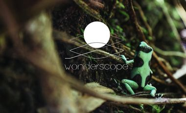 Project visual Wonderscope - Seeing Nature differently
