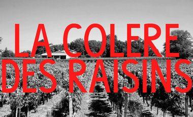 Project visual LA COLERE DES RAISINS