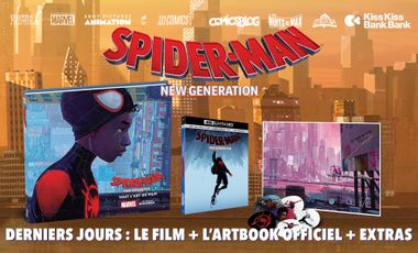 Visueel van project Spider-Man New Generation : le film + l'artbook officiel