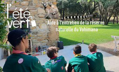 Visuel du projet L'été Vert à Madagascar