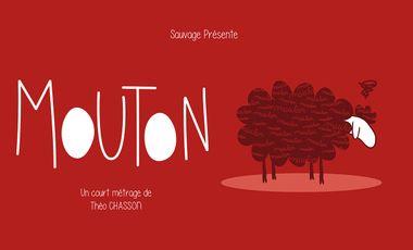 Visueel van project MOUTON