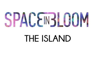"Visuel du projet Financement du Clip ""The Island"" de Space in Bloom"