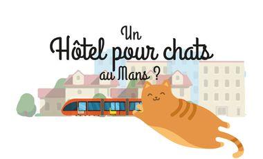 Visueel van project Un hôtel pour chats au Mans