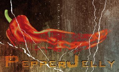 Visueel van project PepperJelly - 1er album