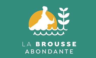 Visuel du projet La brousse abondante: une ferme agro écologique au Mali