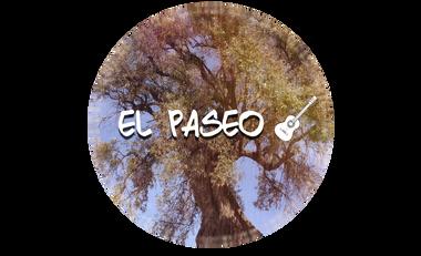 Visuel du projet Participer au projet El Paseo - Peyrestortes (66)
