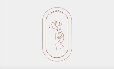 Visueel van project NECTAR