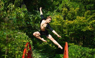 Visuel du projet Dernière année d'étude en ballet professionnel