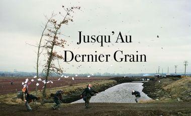 Visuel du projet Court Métrage - Jusqu'Au Dernier Grain