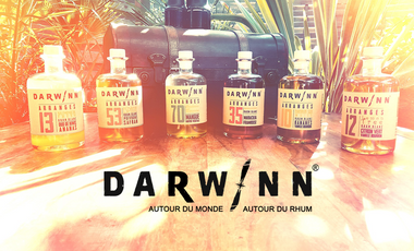 Project visual DARWINN RHUMS Les rhums arrangés qui font voyager