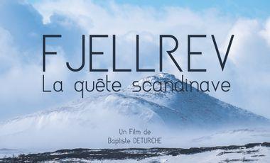 Visueel van project FJELLREV, la quête scandinave