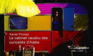 """Visuel du projet XAVIER PLUMAS (Tue-Loup) - """"Le cabinet vaudou des curiosités d'Adèle"""""""