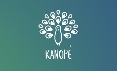 Visueel van project Le Kombucha Kanopé: La boisson probiotique produite en Vallée de Chevreuse