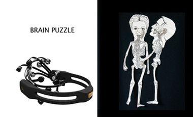 Project visual Brain puzzle