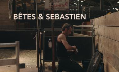 Visueel van project Bêtes & Sébastien