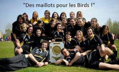 Visueel van project Des maillots pour les Birds!
