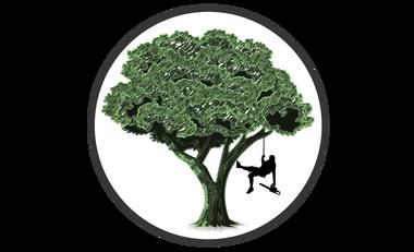 Visueel van project Un camion pour Arboréo, arboriste-grimpeur passionné et écoresponsable