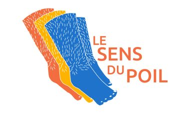 Project visual Le Sens du Poil