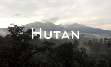 Visueel van project Hutan, un documentaire sur la déforestation en Indonésie