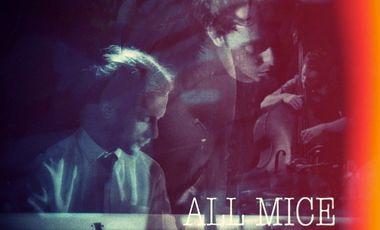 "Visueel van project All Mice, enregistrement de l'EP ""As we are"""