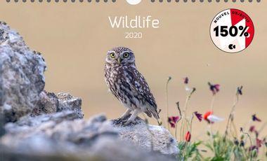 Visuel du projet Calendrier Photo 2020 sur les Animaux Sauvages