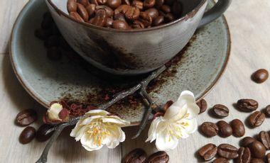 Project visual Blossom Café: votre nouveau café - salon de thé à Nantes!