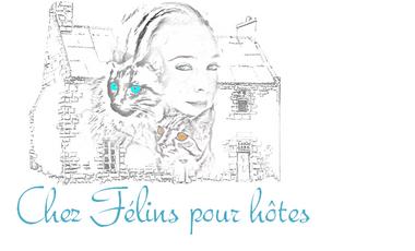 Project visual Hotel familial pour chats à Niort