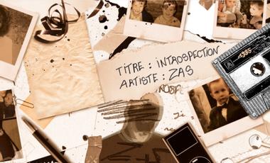 Project visual INTROSPECTION,  1er Album de ZAS