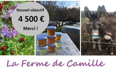 Project visual La Ferme de Camille