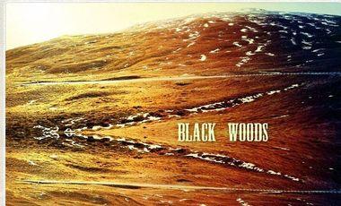 Project visual 2ème album des Black Woods