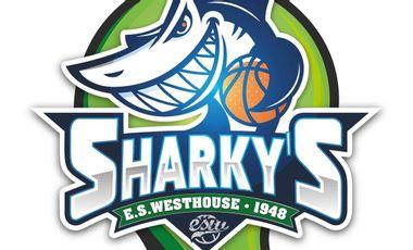 Visueel van project Mascotte Sharky's pour l'école de basket de Westhouse