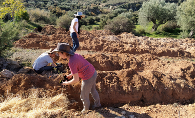 Visueel van project Reforestation and Permaculture in the Andalusian Desert