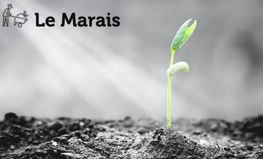 Visuel du projet Le Marais