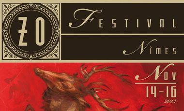 Project visual ZO Festival 2013