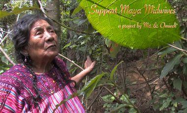 Project visual Support Maya Midwives