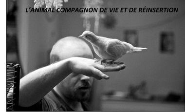 Visuel du projet ANIMAUX, COMPAGNONS D'INSERTION